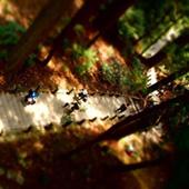 奈良の室生寺にて奥の院へ